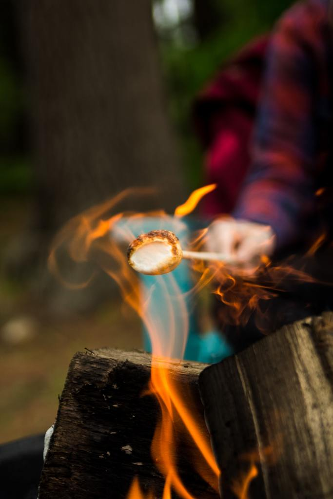 marshmallow toasting over flaming log